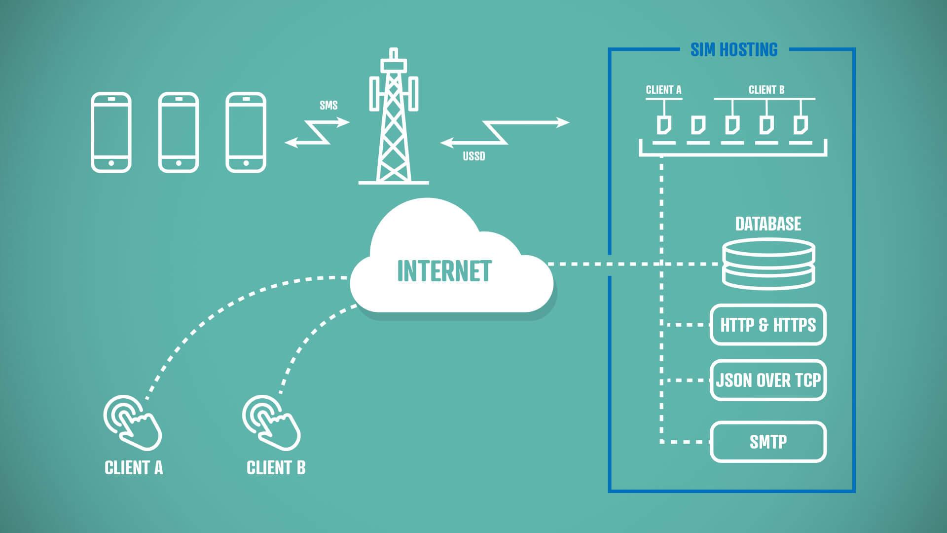 sim hosting diagram
